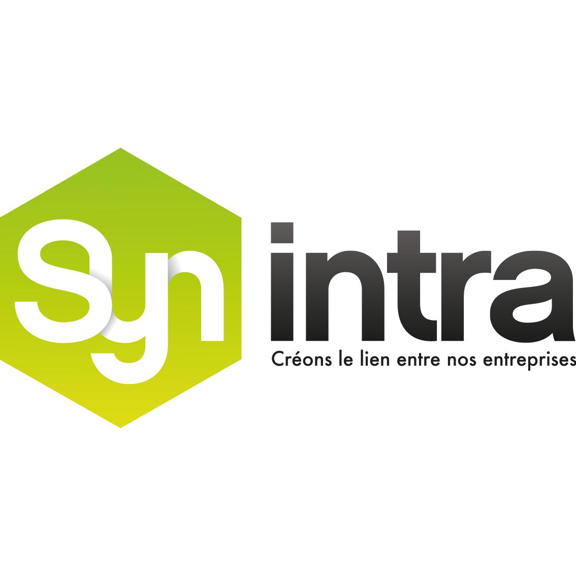 logo synintra
