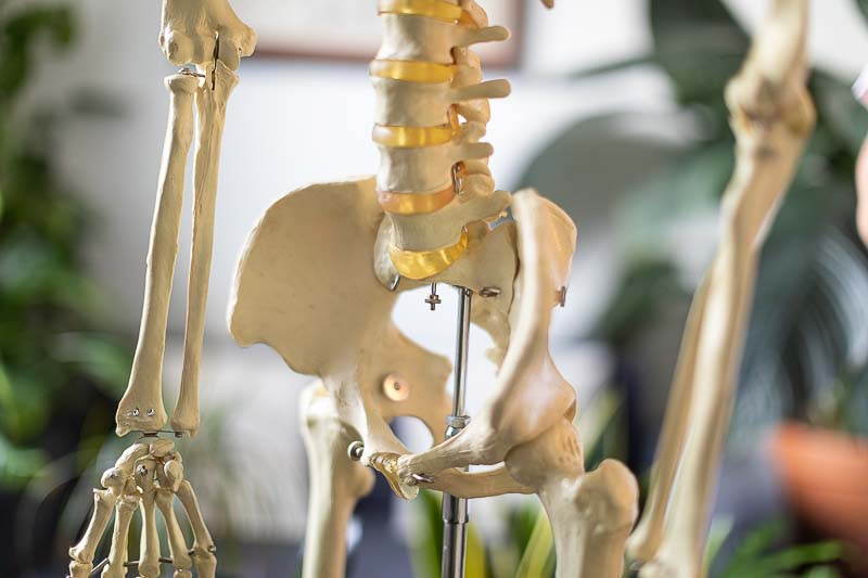 ostéopathe hanche bassin
