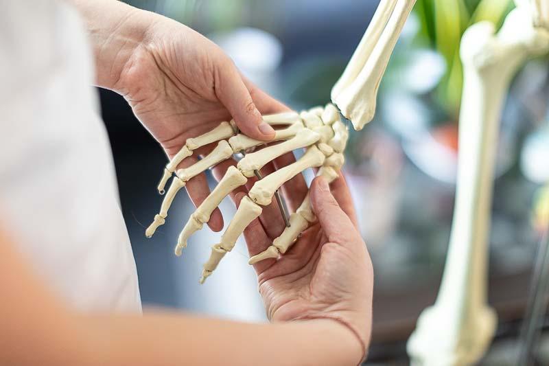 photographe ostéopathe main