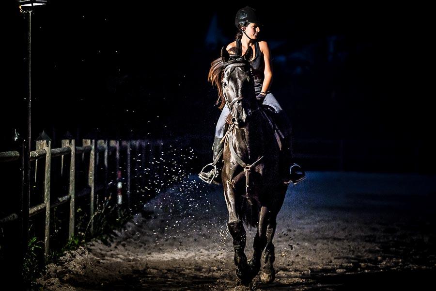 Photographe book cheval